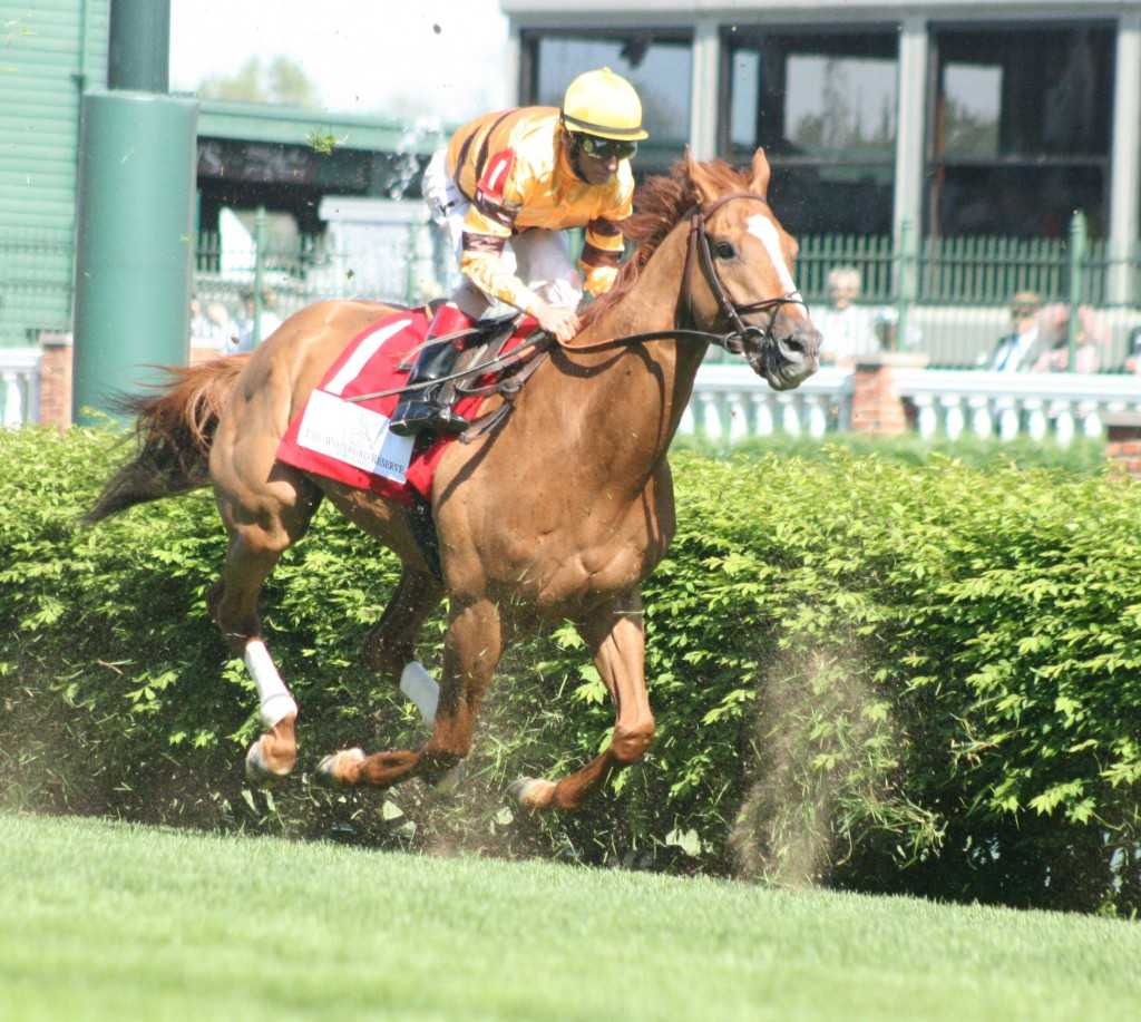 Wise Dan is flying into the history books as one of the all-time greats