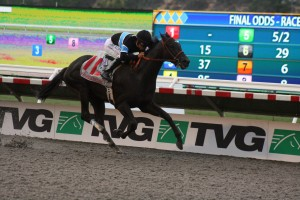 Shared Belief proved youth was best again