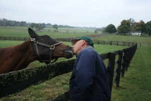 Love is in the air at Old Friends Farm as tour guide John Bradley and Mixed Pleasure share some slobber.